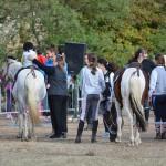 Fête du cheval 2016